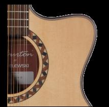 jaką gitarę kupić